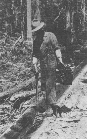 greasing the log chute